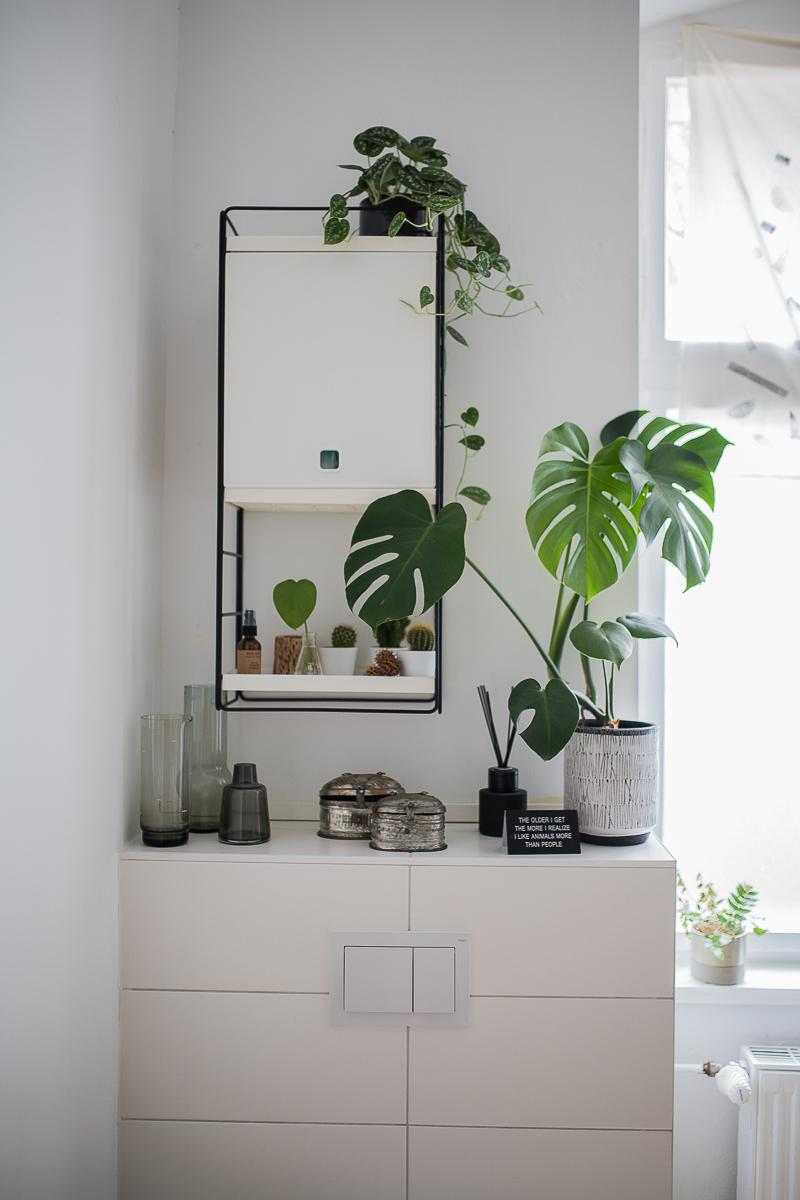 Ikea Regalsystem Wandschrank mit Monstera